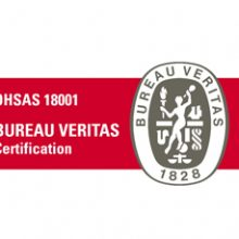 FRIZONIA has successfully undergone the audit for OHSAS 18001 certification