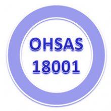 FRIZONIA en proceso de certificación de la OHSAS 18001