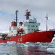 FRIZONIA is present in the vessel B.I.O. HESPERIDES